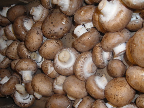 Mushrooms (cremini)   by wikioticsIan