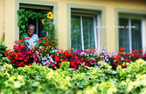 grandma   by Agnes Leung
