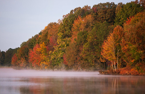 tree fall colors leaves fog colorful foliage ghholt canecreekpark10302010 ghholtphotography