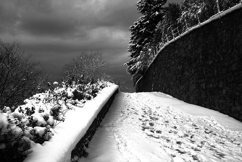 Fiesole - Strada panoramica innevata