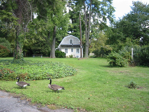 Boelson Cottage in Fairmount Park   by Kristine Paulus