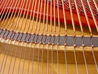 Piano Restoration | by j_bary
