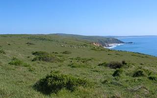 California Coastal Prairie 2