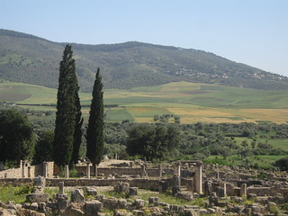 Volubilis in rure - looking south from the Capitol | by Mary Loosemore