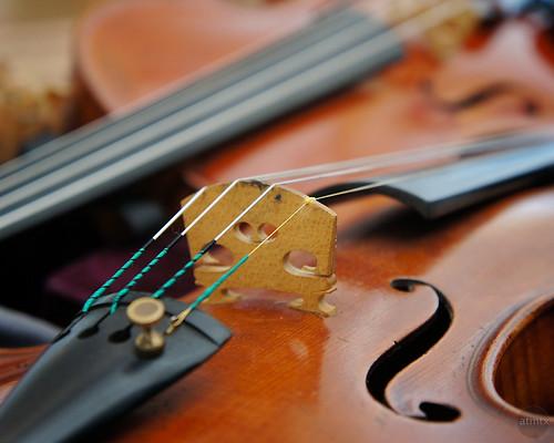 austin texas bokeh violins twoviolins blackerbyviolinshop