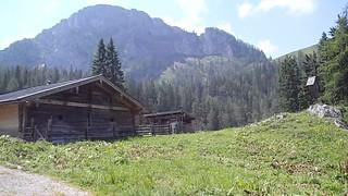 Alpine meadow above Berchtesgaden