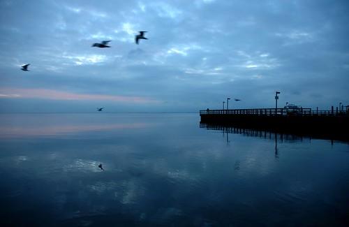 blue sunrise pier dock nikond70 longislandny shore fireisland brookhaven suffolkcounty bluemorning nighttoday utata:project=ourplaces brookhaventownship