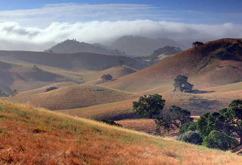 Mount Diablo Foothills | by Randall Beetle Photography