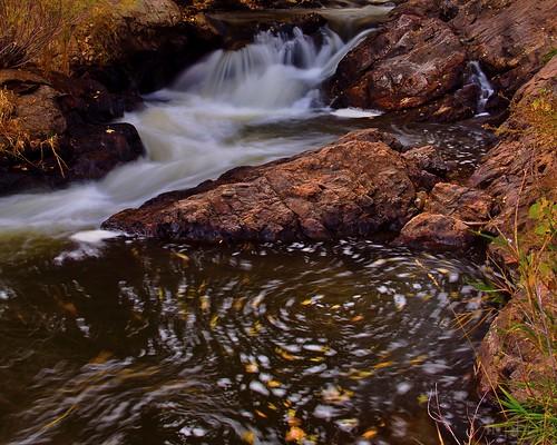 fall water leaves waterfall colorado swirl eddy cascade bearcreek