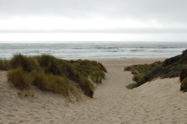 Path to Kehoe Beach