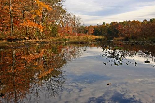 autumn fall reflections newengland foliage ludlowmassachusetts