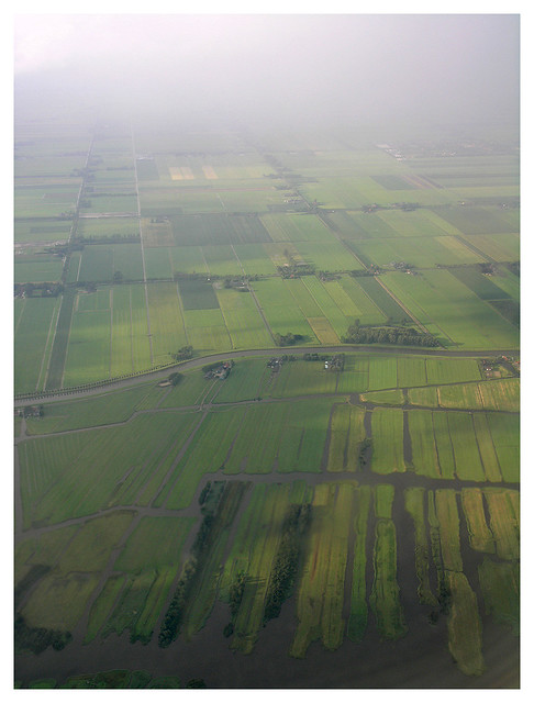 Dutch landscape from the airplane 1