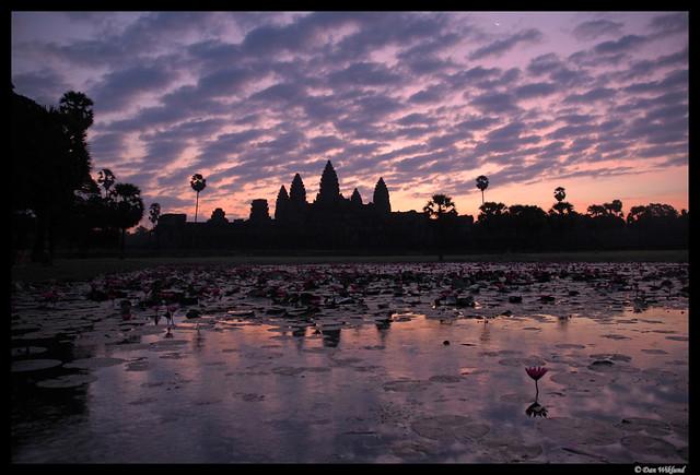 The glory of Angkor Wat