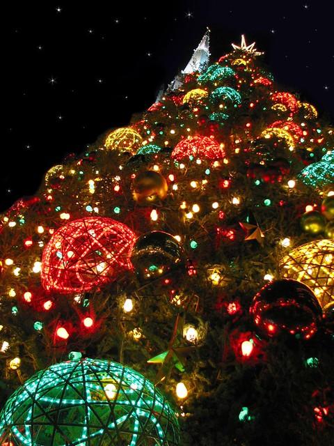 German Christmas Tree.German Christmas Tree Chris Beiser Flickr