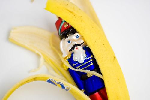 DSC_7496 | by 30cent_banana