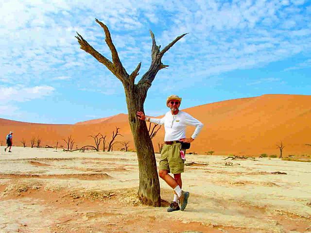 Namibian Dead Desert Woodlands