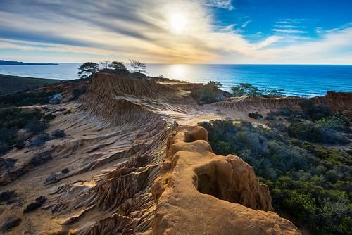 torreypines sandiego brokenhill torreypinesstatepark
