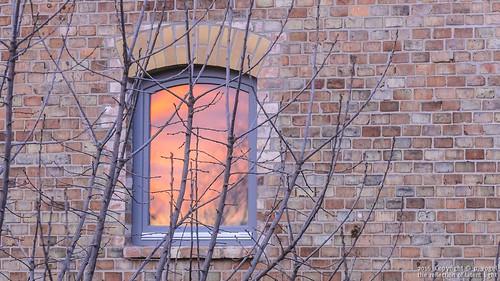 sol soleil sole zon helios güneş солнце fensterwindows bauwerk•exampleofarchitecture sonnenlicht•sunlight 38124bsleiferde backsteine•brick haushäuser•househouses hauswand•housewall sonnenaufgang•sunrise zweigbough anaturedocument•notarrangednormanipulated sonnentag•dayofsunshine