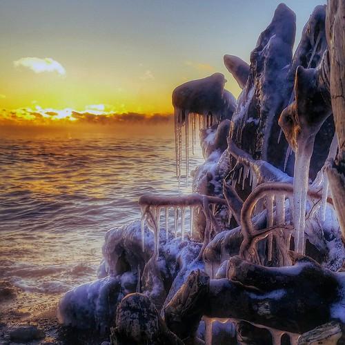 toronto ontario canada sunrise shoreline lakeshore