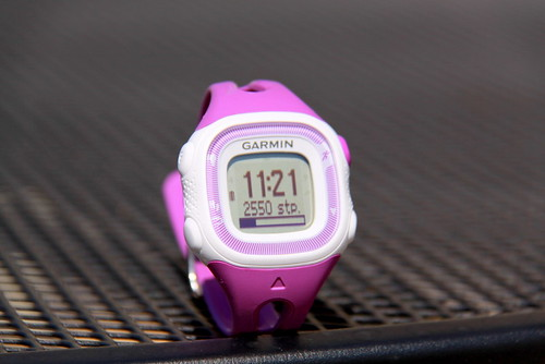 garmin watch (4) | by Everyday Snapshot