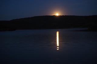 Rising Moon | by keynowski
