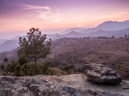 light sunset sky green misty rocks surreal hills pines farms