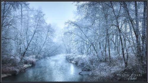 mist fog creek river maple stream south columbia ridge british alouette leaning depth keithgrajala
