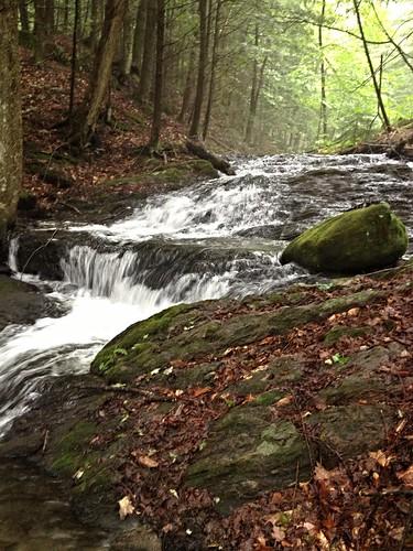 strafford vermont stream brook water woods iphone smartphone innatelmwood