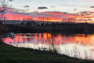 Coucher de soleil à l'étang de Bolmon