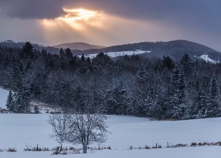 Winter Morning   by Tim_NEK