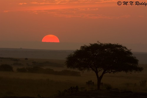 silhouette kenya masaimaranationalpark nikond4s sunsettingcolors