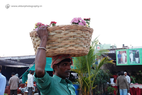 Plants Carrying Man | by Akbar - Web Designer and Freelance Photographer