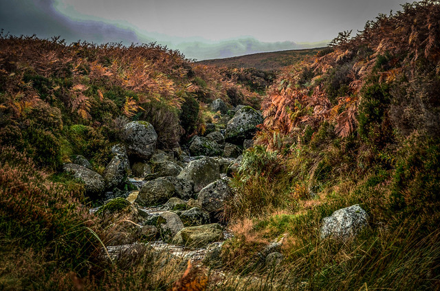 Irish Stream-Wicklow Mountains