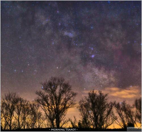 morning trees sky night canon rising timelapse glow space south tripod border science sagittarius nebula astrophotography april astronomy nightsky photostitch milkyway astronomer tiffen 2016 canon6d tomwildoner leisurelyscientist leisurelyscientistcom
