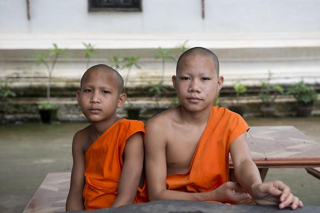 LAO238 Boy monks - Luangprabang 179 - Laos