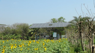 Solar Irrigation | by Helena Wright