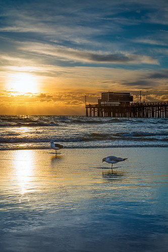 california ca sunset nature birds photoshop canon landscape photo interestingness interesting photographer picture explore software nik lightroom adjust infocus newportpier cs6 70d topazlabs ericgail canon70d 21studios