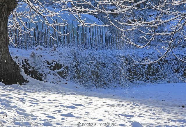 La neige et le soleil IV