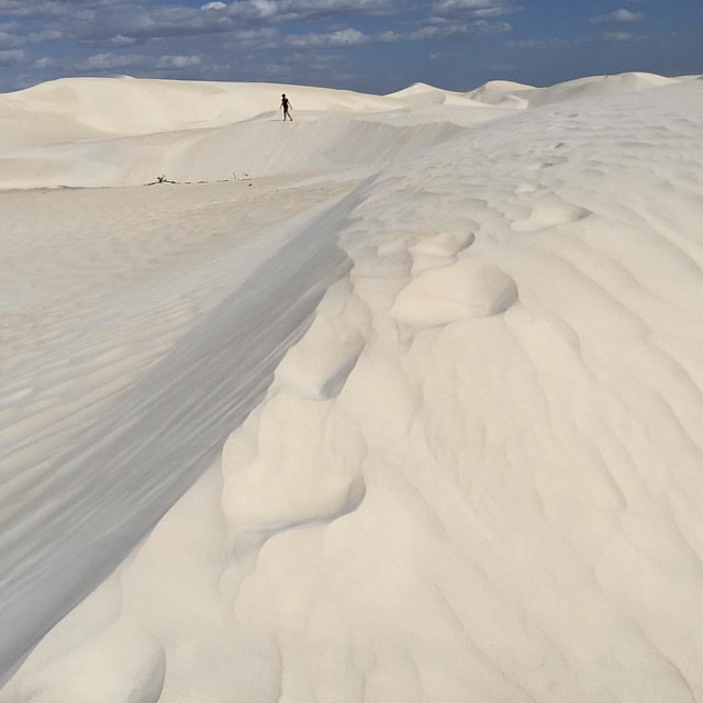Where's Audrey? The sand dunes of Nambung National Park, just south of Cervantes, Western Australia en route to the town of Lancelin.