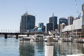 Marina, Darling Harbour, Sydney, NSW | by Jim 03