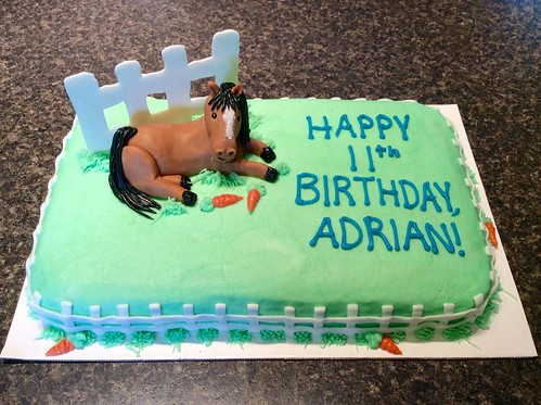 Horse cake by Whitney, Linn County, IA, www.birthdaycakes4free.com | by Birthday Cakes 4 Free