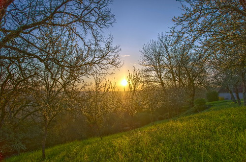 trees sky sun sunlight nature sunrise landscape soleil spring day lot ciel arbres paysage printemps hdr k5 skyview matin leverdesoleil quercy