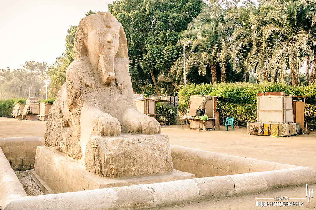 The alabaster sphinx found outside the Temple of Ptah