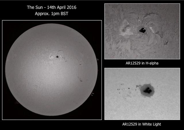 Sun in H-alpha & AR12529 in H-alpha & White Light 14/04/16