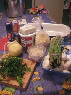 Vegetarian lasagna - ready to begin