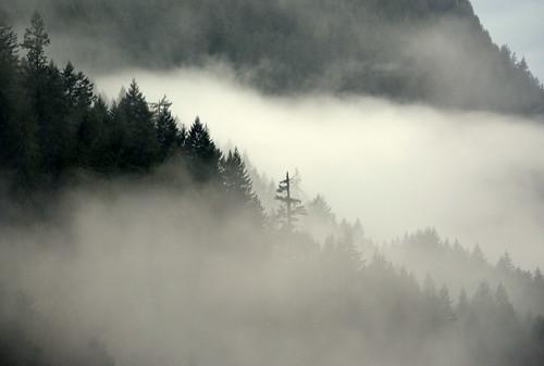 MISTY MOUNTAINS NEAR HOPE, BC.