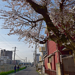 20160331_044_2