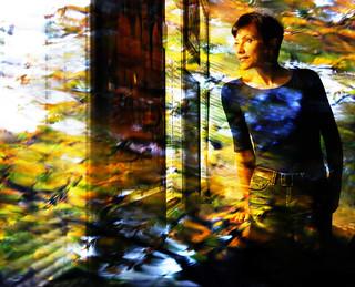 Midwinter's daydream   by Natalia Medd