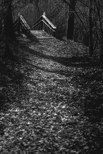 travel bridge blackandwhite usa history water dark landscape blackwhite unitedstates outdoor pennsylvania path historic yellowsprings earlyspring chestercounty