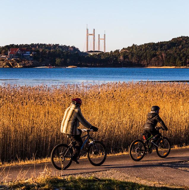 Biking before the bridge